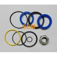 6589793 Bobcat seal kit